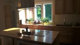 sunny kitchen window