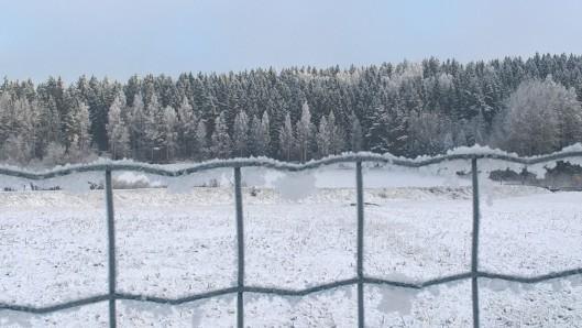 may-snows_34554242426_o