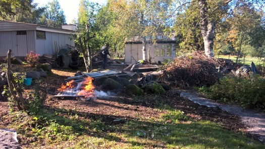 autumn-projects-shed-removal-new-roadside-beds_36767204874_o